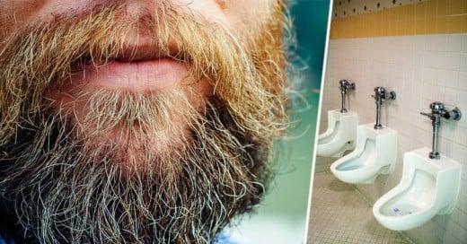 Las barbas tienen las mismas bacterias que las de un inodoro y otras 7 cosas que no sabías de ellas