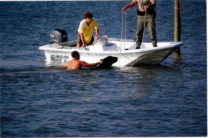 Rescata a oso de ahogarse