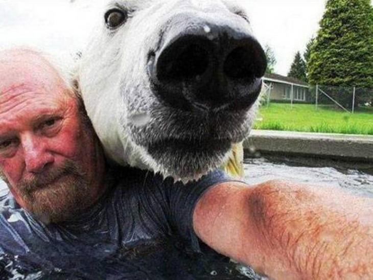 selfie con oso polar en una alberca