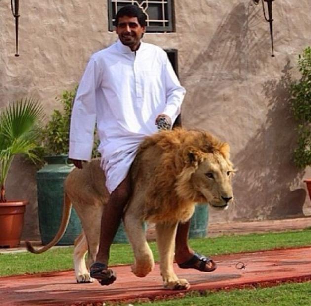 leon mascota dubai