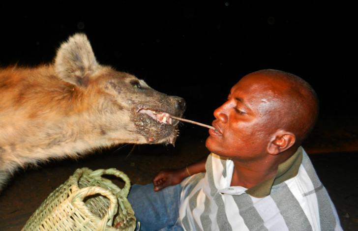 selfie con hiena salvaje en la noche dandole de comer con la boca