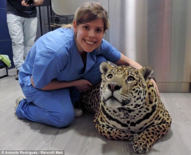 mujer vetarinaria se saca foto con leopardo