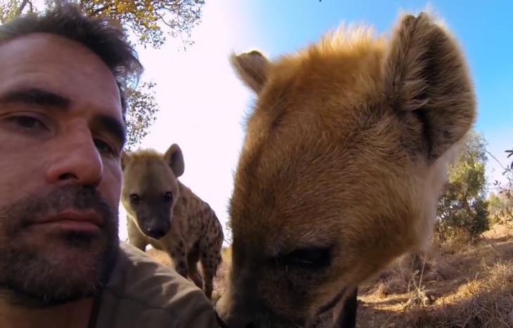 selfie con hienas salvajes