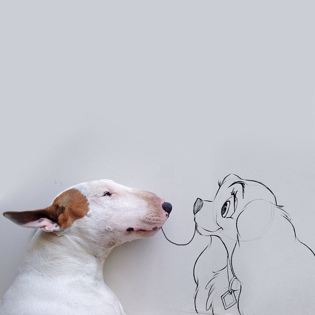 bull terrier jimmy choo comiendo espagueti con la dama