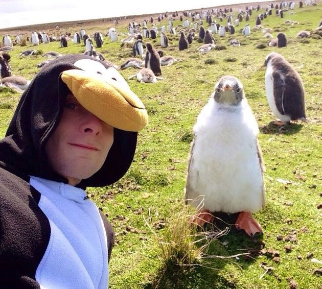 selfie con pingüino salvaje