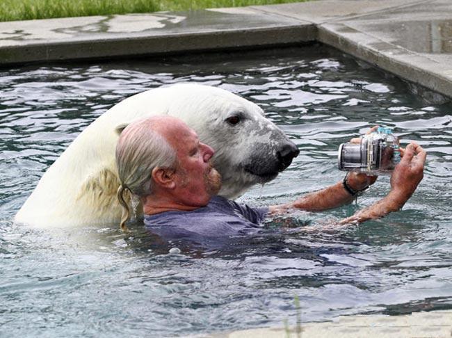 hombre tomandose selfie con oso polar en alberca
