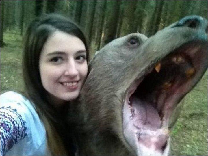mujer toma selfie con oso salvaje