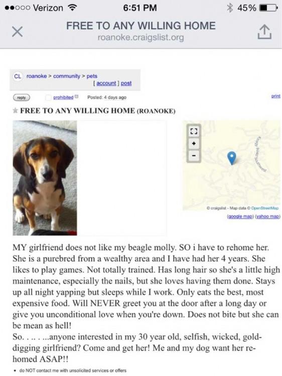 Su novia le pidió regalar a su perrita