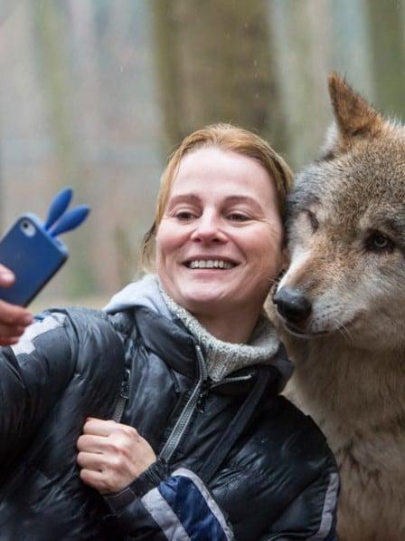 mujer toma selfie con su celular con un lobo