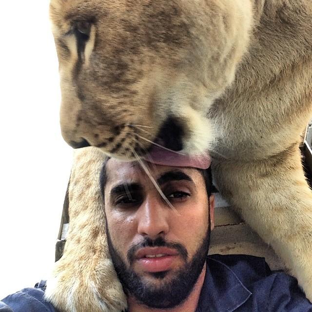 leon lamiendo humano en selfie