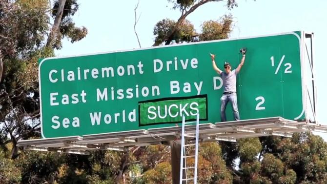 Steve-O es detenido por trepar a una grúa y protestar contra Sea World