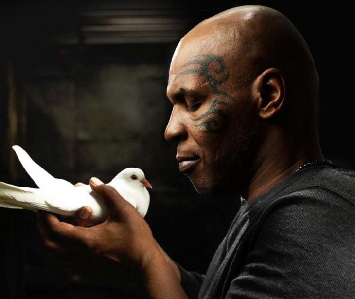 tyson con paloma blanca