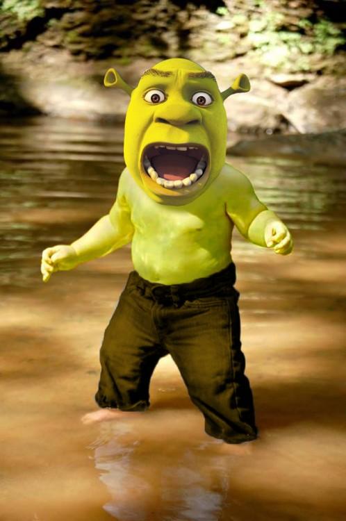 Photoshopean a bebé, shrekl