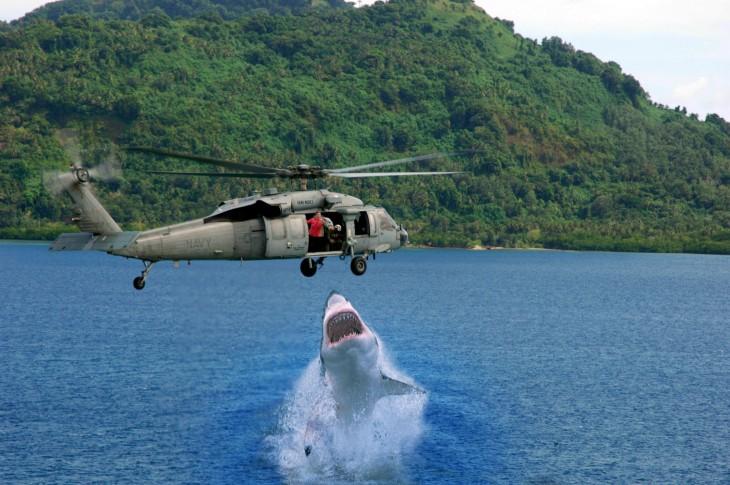 Photoshop niño cae en la playa tiburón