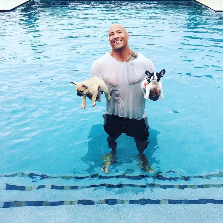 dwayne johnson salva a su perrito de ahogarse en alberca