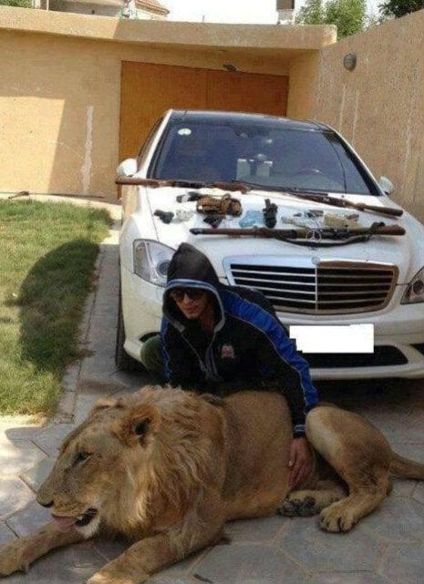 narco junior con leon y armas y carro lujoso