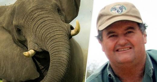 Cazador muere por el mismo elefante que intentaba cazar