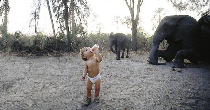 Tippi Degré de un año, entre elefantes
