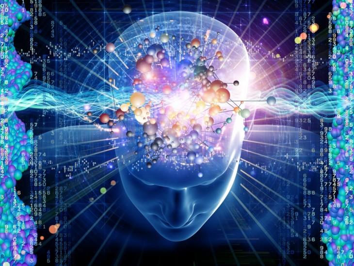 El cerebro humano en expansión