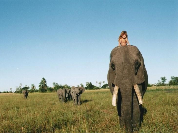 Tippi monta en elefante