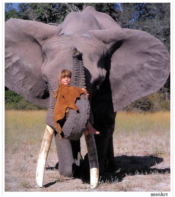 Tippi montada en trompa de elefante