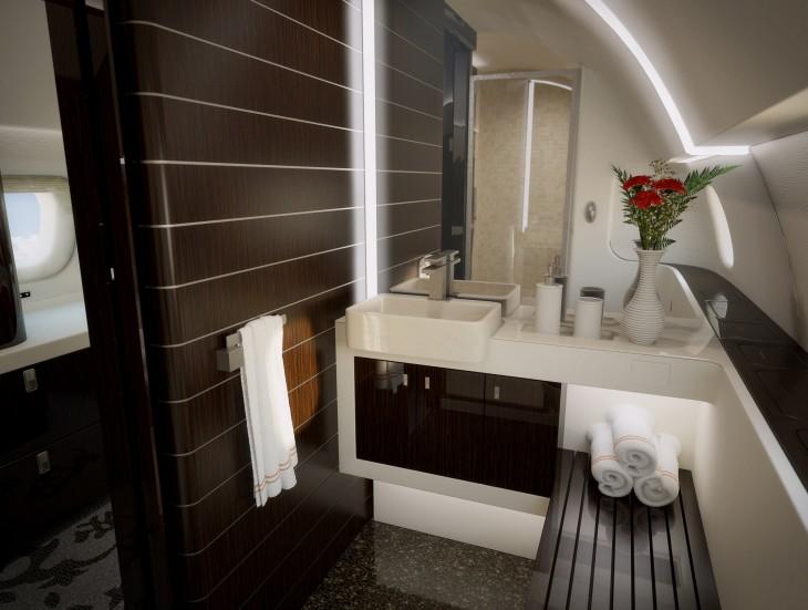 Baño en un jet privado