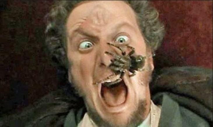 Hombre con tarántula en la cara