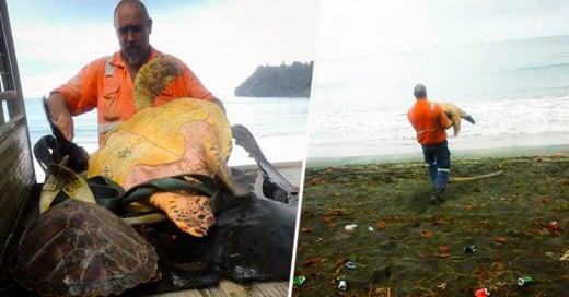 Dos amigos rescatan a tortugas del Mercado Negro de Papúa Nueva Guinea para regresarlas al mar