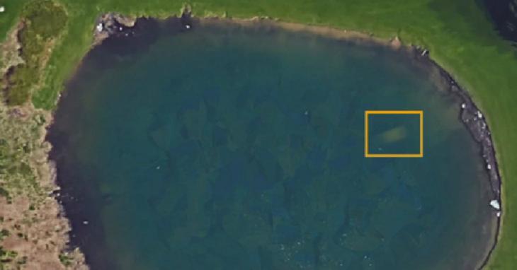 Google Maps ubica auto en laguna