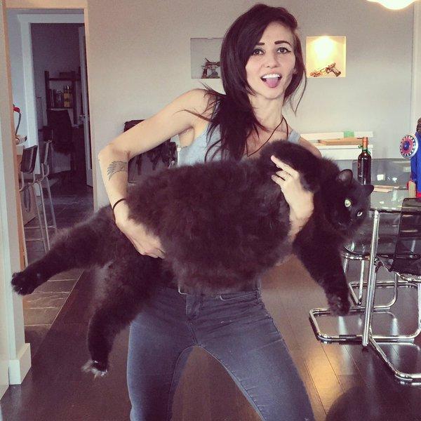 Chica con un gato enorme
