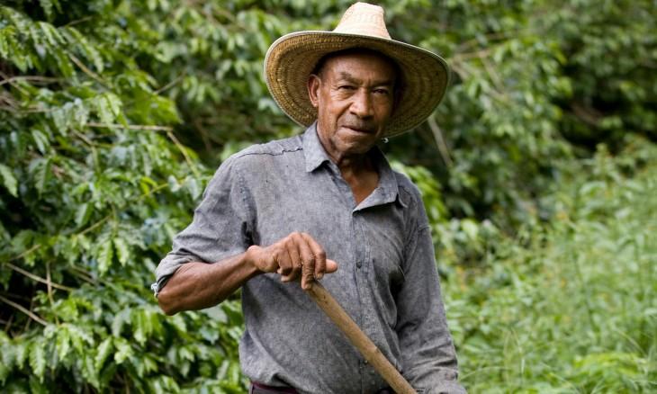 Agricultor se supone encontró 600 mdd