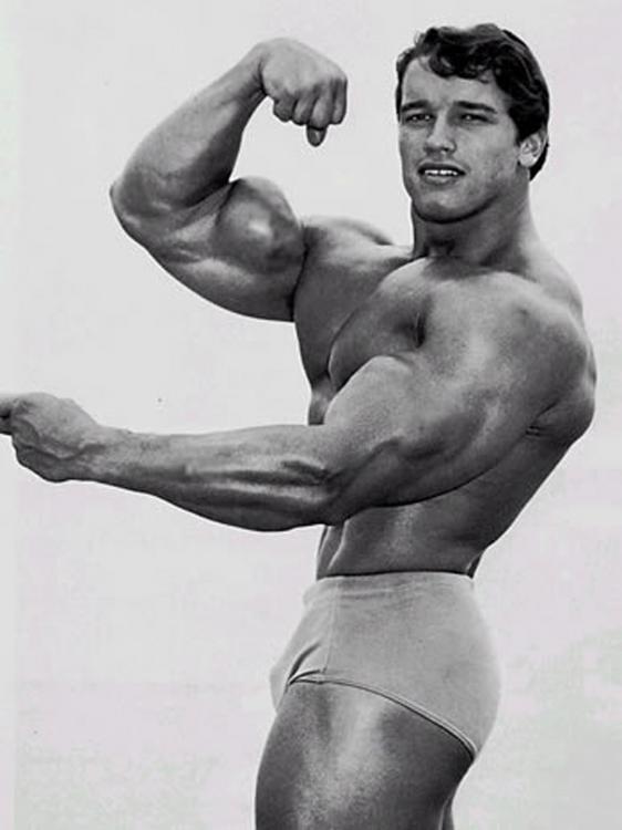 Arnold Schwarzenegger joven