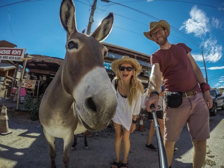 pareja de polonia y burro
