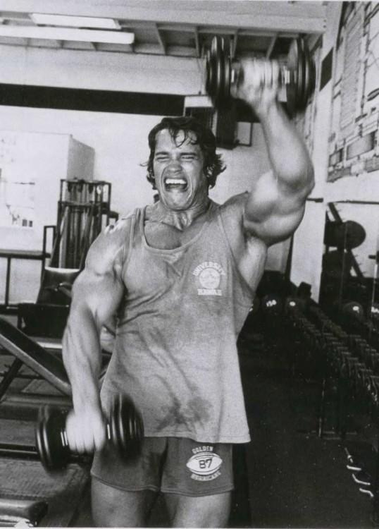 Arnold Schwarzenegger gimnasio