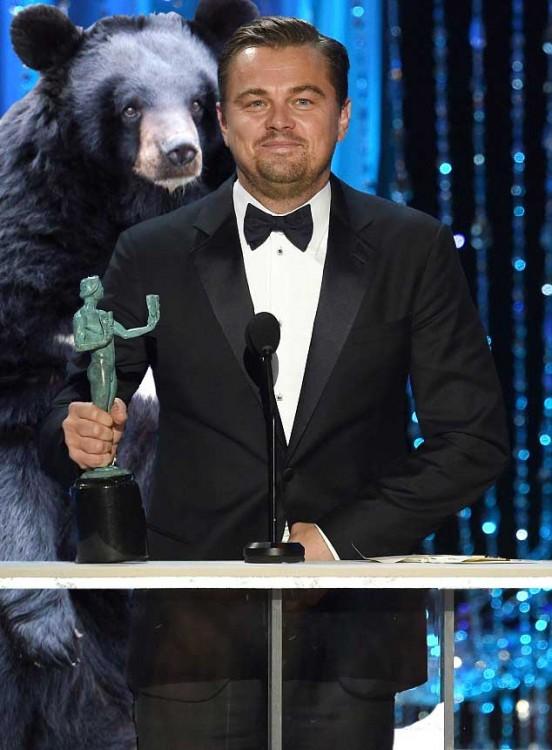 Dicaprio premio photoshop oso