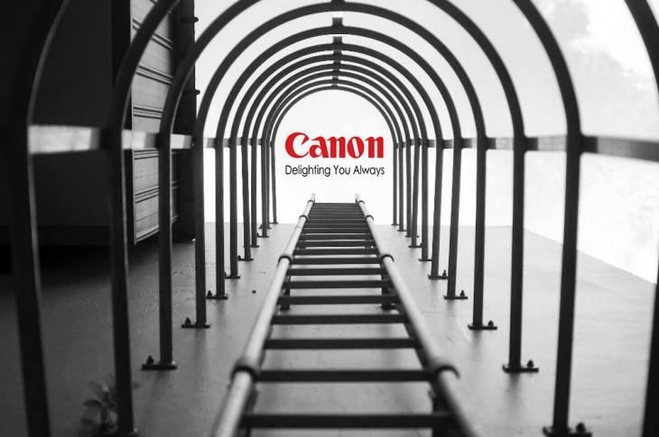 Foto premio Nikon