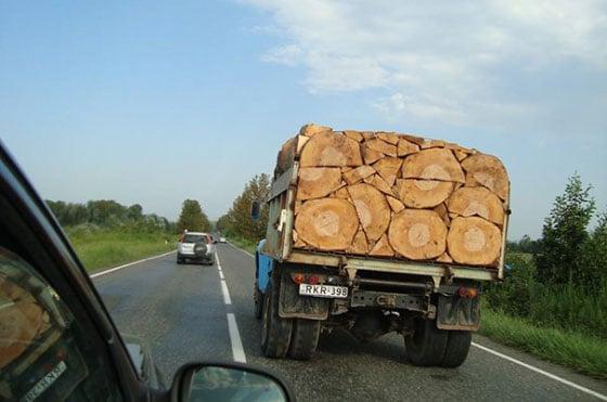 camión con troncos perfectos