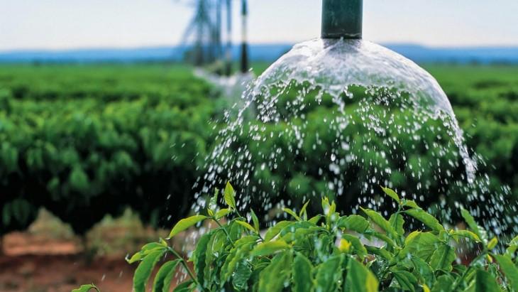 agua agricultura