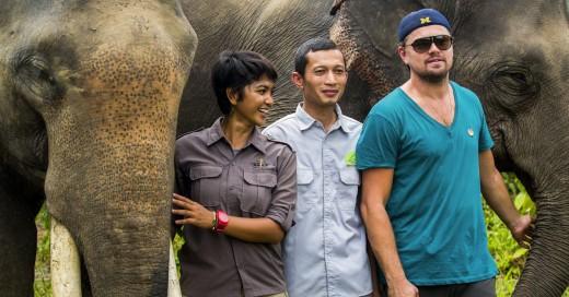DiCaprio busca construir santuario para animales, ¡E Indonesia lo amenaza; podría vetarlo!
