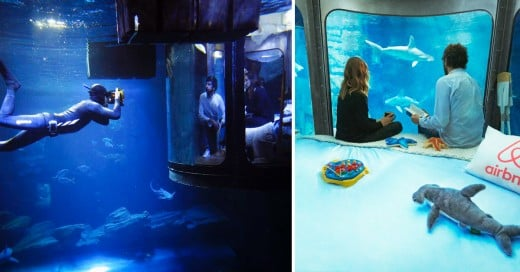 Cover-airbnb-tiburones