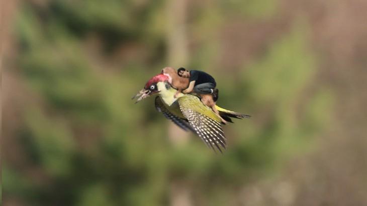 photoshop keanu pájaro
