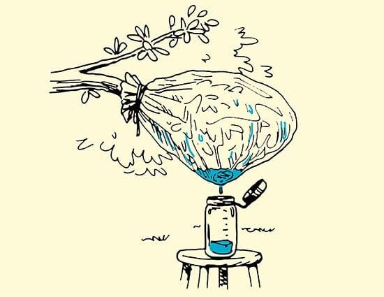 metodo para recolectar agua