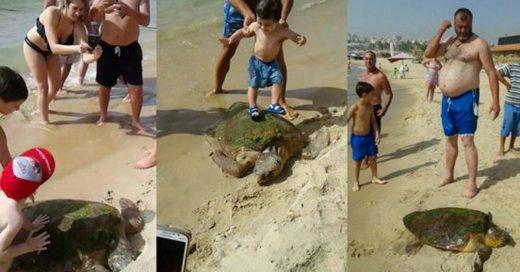 Cover-Sacan-tortuga-del-mar-para-tomarse-unas-selfies-y-casi-la-matan