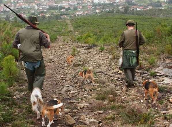cazadores con perros