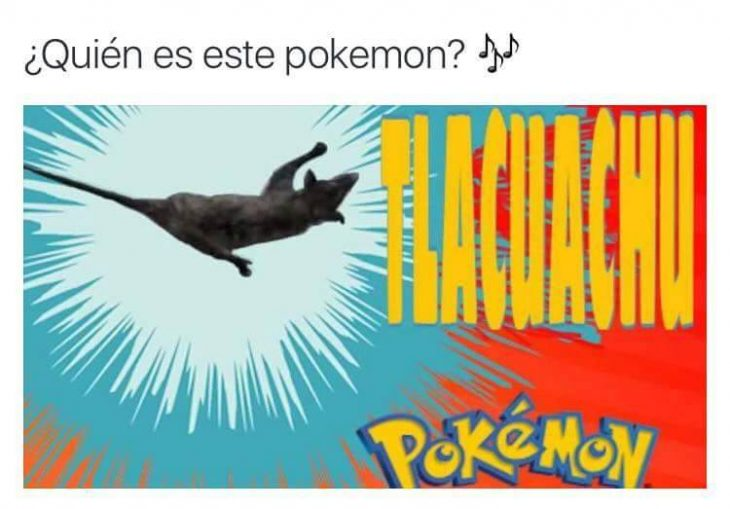 tlacuachu
