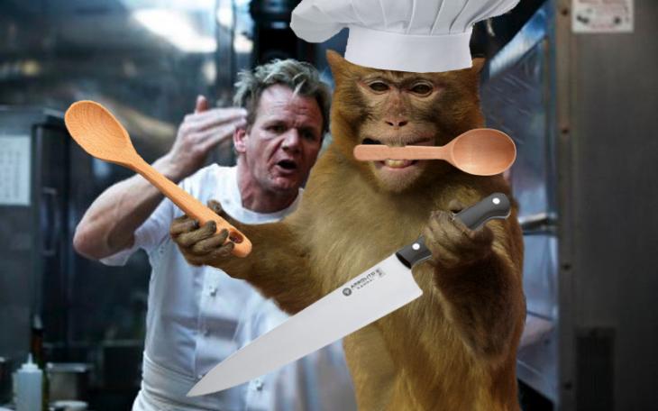 mono batalla de photoshop