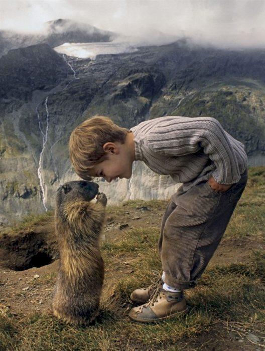 niño y marmota