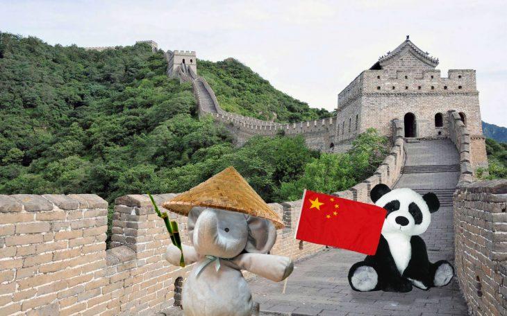 elefante Muralla China