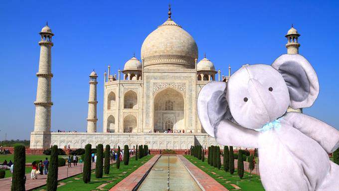 elefante Taj Mahal