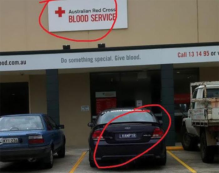 banco de sangre vampiro